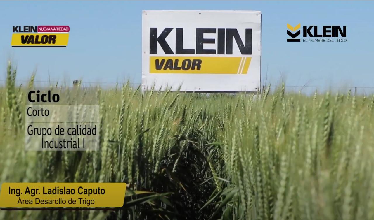 Recorrido Virtual 2020 – Klein Valor
